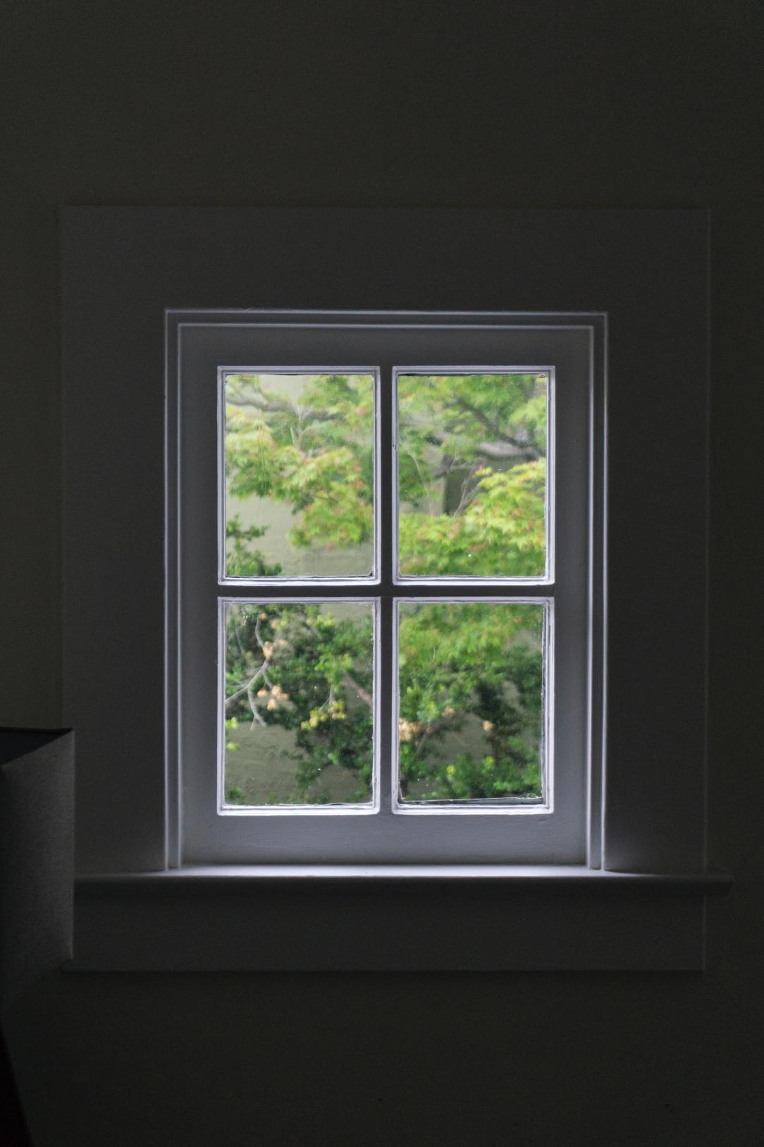 A window that shows a view of the outside where there is a tree.